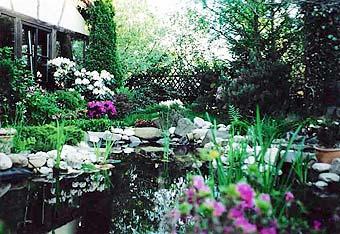 Abendliches Flair am Gartenteich