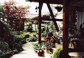 Zugang zur Terrasse und zum Wintergarten